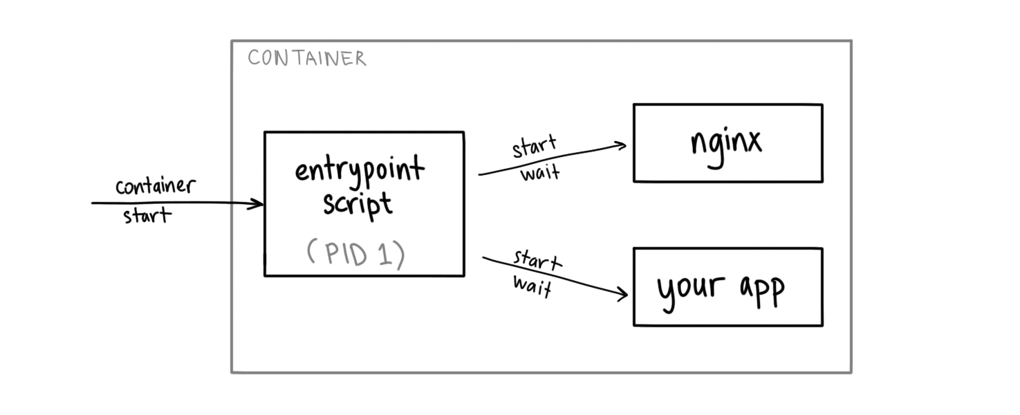 diagram showing container with a script as the entrypoint starting nginx and user application